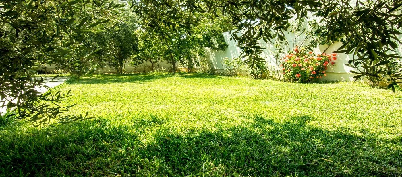 Jardin de la résidence Mahdia Place Apartments